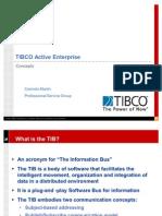 03 TIB Concepts
