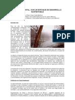 Salud Ambiental - RESPYN