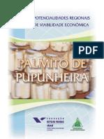 PALMITO DE PUPUNHEIRA