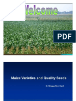 Maize Varieties and Quality Seeds [Compatibility Mode]