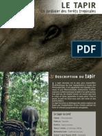 Le Tapir -Guyana Francesa- wwf .