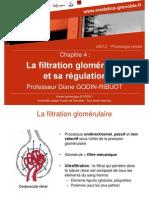la filtration glomérulaire