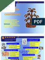 37270890 Cioccolato Far