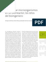 domesticar_biorreactor