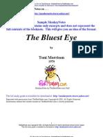 39172524 Bluest Eye Resumen