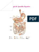 FisiologiaApDigestivo
