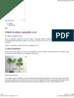 _ Tehnici de Altoire a Pepenilor Verzi