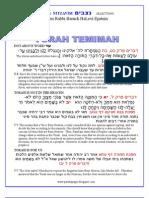 Nitzavim Selections from Rabbi Baruch Epstein