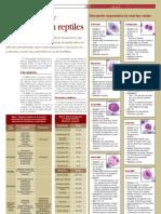 87. Hematolog a y Bioqu Mica en Reptiles 699