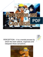 Perception and Coordination 3