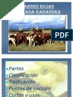 Unidad 9 Carnes y Sub Productos