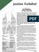 SII Bulletin 20110109