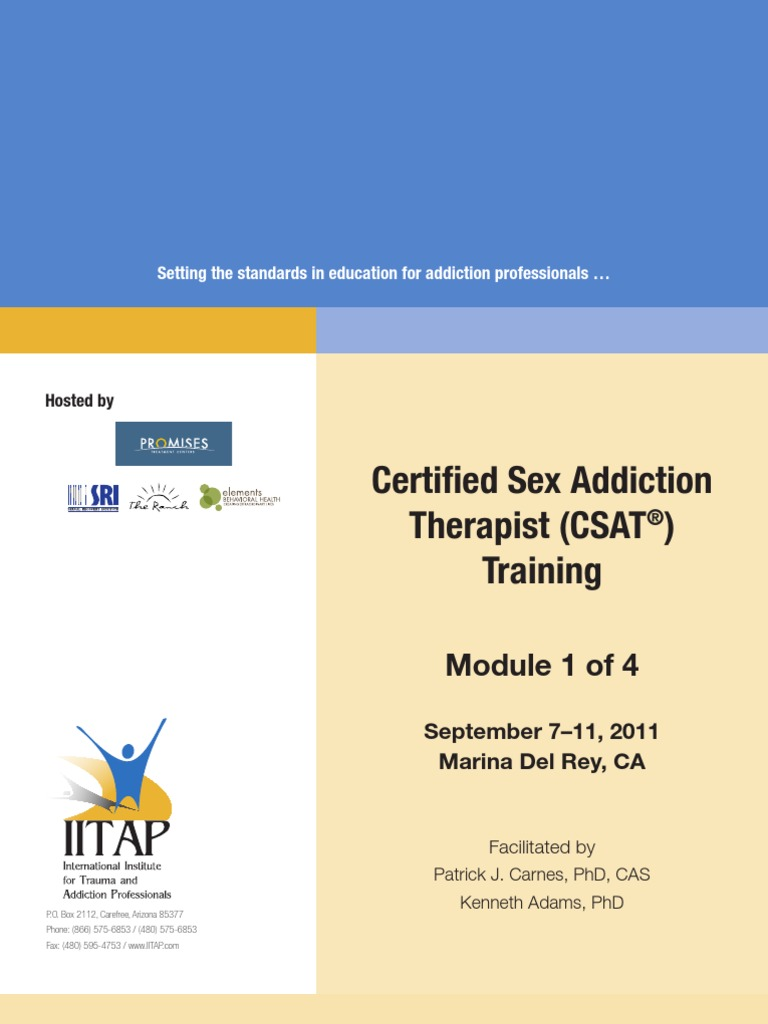 The Sexual Recovery Institute And Iitap Certified Sex Addiction