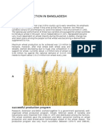 Assignment on Wheat