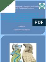 Aislamiento y caracterización de microorganismos hidrocarbonoclastas