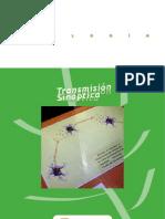 Web Transmision Sinaptica