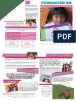 Folleto - Fundación Denisse Bistre