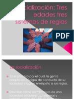 Diapositivas de Socialización