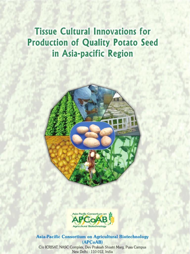 Potato Tissue Culture Innovations for Asia Pacific | Potato