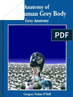 Anatomy of the Human Grey Body