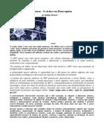 A incrível máquina de pensar pdf
