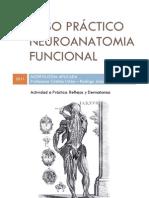 Paso práctico Neuroanatomia funcional 2011 (1)
