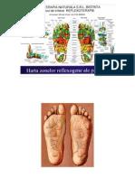Harta picioarelor - Puncte reflexogene