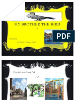 Rudy -My Brother the Bird