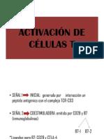 Activacin de Clulas t