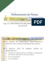 Cap v Metodos de Melhoramento de Plantas