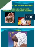 Visão Global das Áreas Funcionais M F P e RH