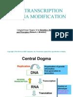 LSM1102_Lec 3a_Transcription Modifications_Part I
