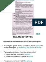 LSM1102_Lec 3b_Transcription Modifications_Part II