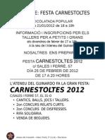 20110808 PROJECTE Carnestoltes
