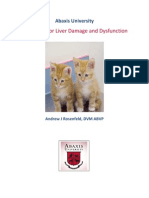 Evaluating Liver Disease and Dysfunction