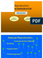 ASexual Reproduction Lesson