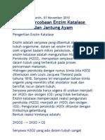 enzim katalase