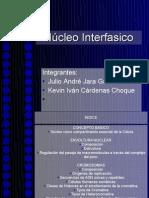 Ncleo Interfasico