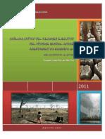 Analisis Critico Doc Las Ciudades y Cambio Climatico