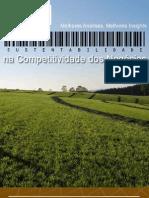 E-Book Sustentabilidade na Competitividade dos Negócios DOM Strategy Partners 2010