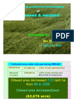 Rapeseed - Mustard [Compatibility Mode]
