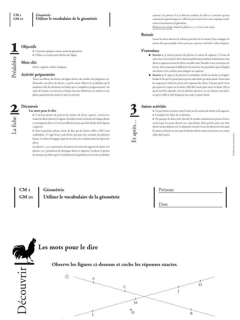 Géométrie - Fiches de préparation + fiches d'exercices - CM1