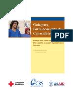 Capacity Building Spanish