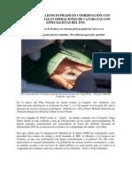 OPERACION CATARATAS AGOSTO -2,011 _2_