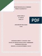 rio Sobre Origen y Desarrollo de La Psicologia Comunitaria_karencarrillo