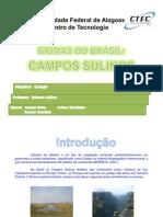 bioma-campossulinos