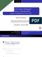 Eduardo Rodríguez - Teorías de Gauge, Semigrupos Abelianos y Supergravedad (2008)