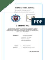 IISEMINARIO- MATERNO