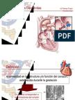 Cardiopatias_Congenitas2008[1]