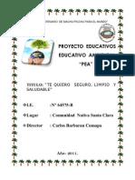 Proyecto Educativo Ambiental Institucional